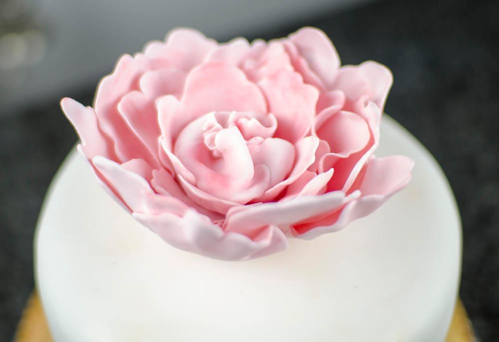 Hochzeitstorte-Wedding Cake