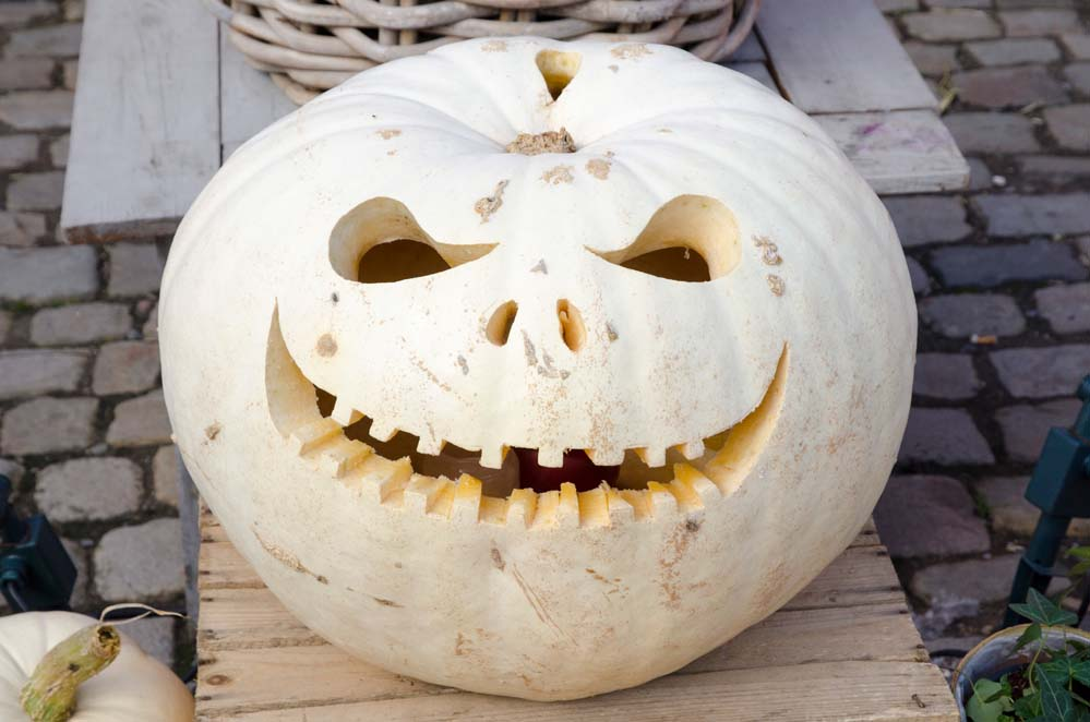 Kürbis Gesichter schnitzen zu Halloween